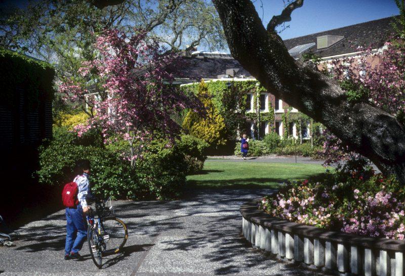 College Applications – A Parent's Survival Guide